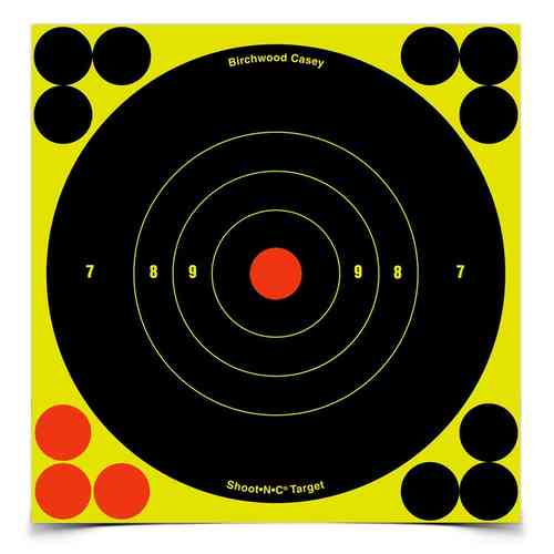 Birchwood Casey Shoot-N-C Targets - 12 x 6""
