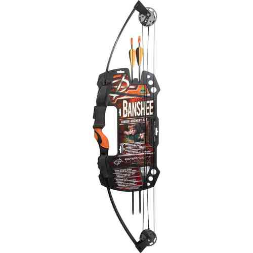 Barnett Banshee Quad Compound Bow