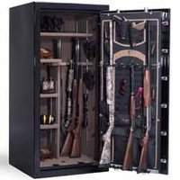 Security - Gun Locks / Gun Safes
