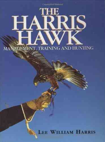 The Harris Hawk - Management, Training & Hunting