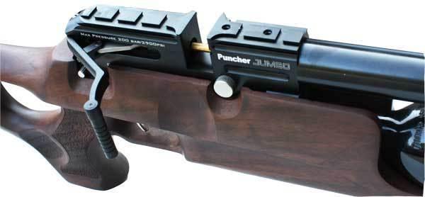 Kral Puncher Jumbo - Thumbhole Walnut - UK Spec  - Pull The Trigger